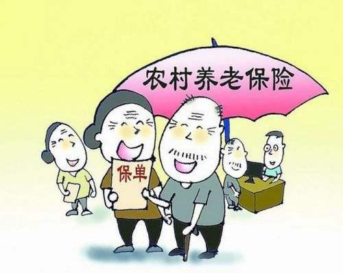 农民工养老保险有什么相关规定? 第1张